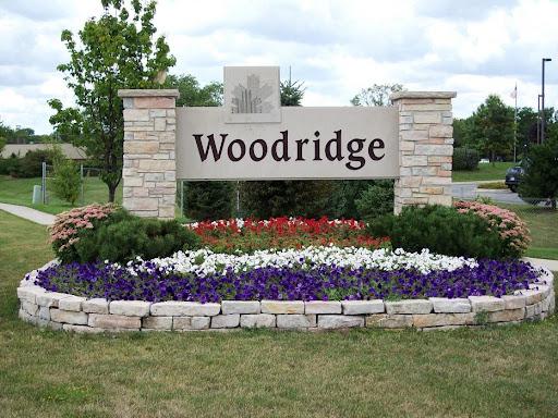 garage door repair service in Woodridge, IL